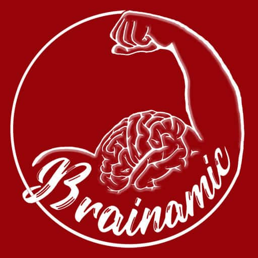 Brainamic – Web and E-commerce